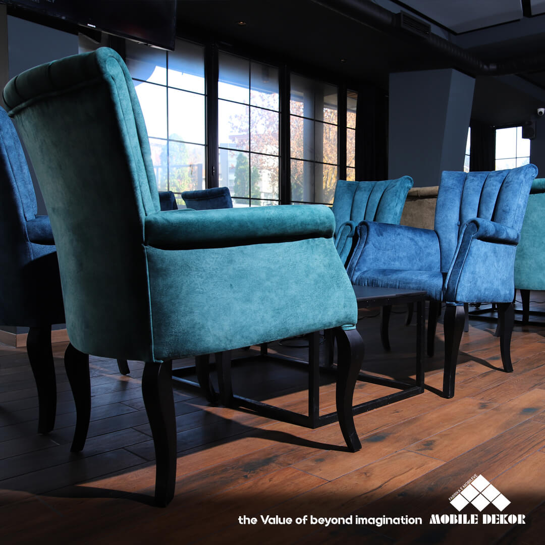 pair of designer chairs by mobiledekor in blue